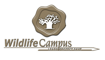 Wildlife Campus Logo